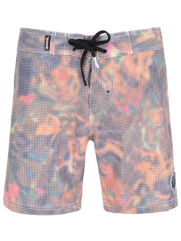 Bench Iron Bikini Babes Boardshorts