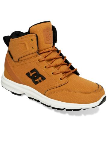 DC Ranger SE Shoes