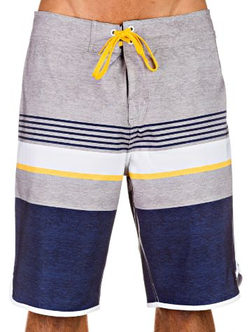 DC Battery Park Boardshorts