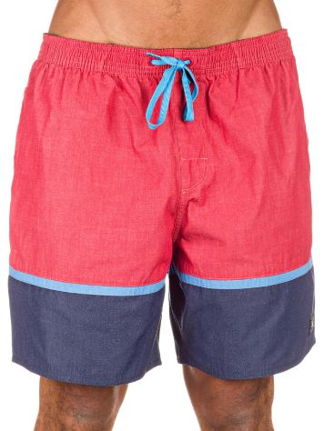 DC Turtle Bay Boardshorts