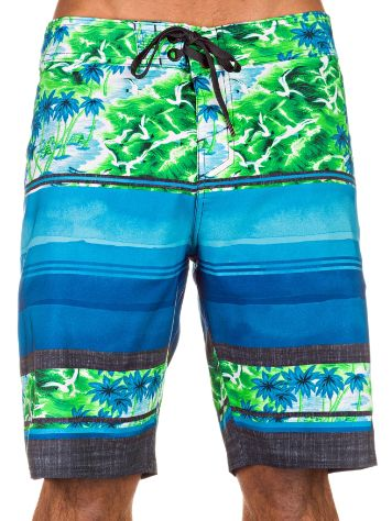 O'Neill Hyper Freak Ambition Boardshorts