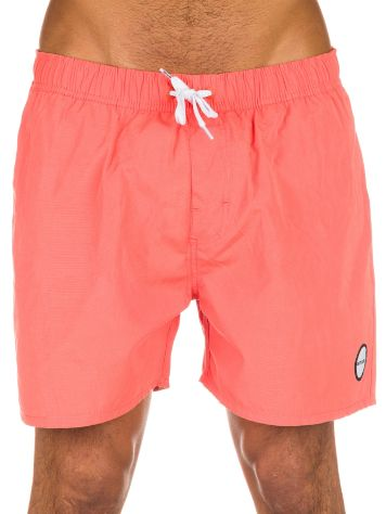 Animal Bradley Boardshorts