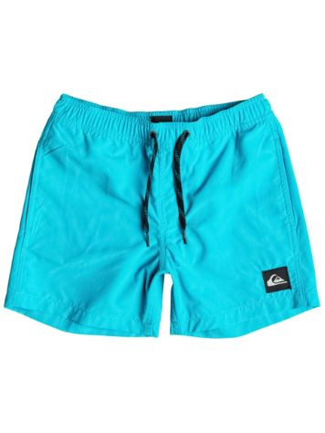 Quiksilver Everyday 13 Boardshorts Jungen