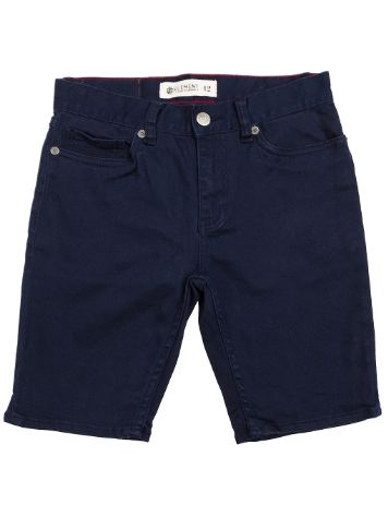 Element Owen Color Shorts Boys