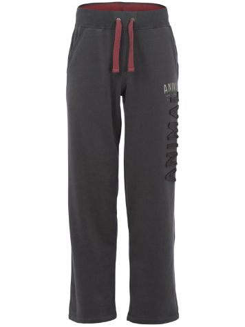 Animal Ashden Sweat pants
