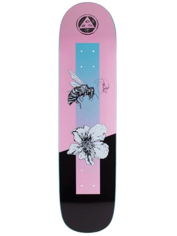 "Welcome Adaption On Bunyip 8.0"" Skateboard Deck"