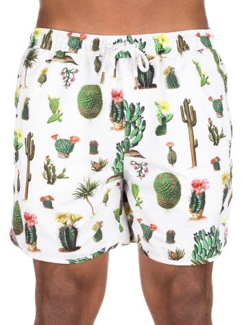 Dedicated Cactus Boardshorts