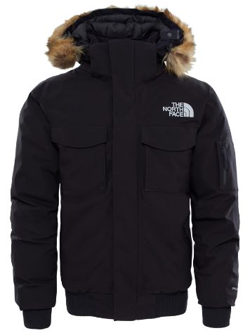 THE NORTH FACE Gotham Gtx Jacke